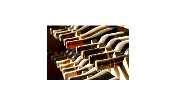 sc 1 st  CharityAuctionsToday & Instant Wine Cellar Too!