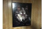 Landscape single wolf pic cm