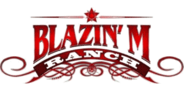 Sponsor logo blazingmranch